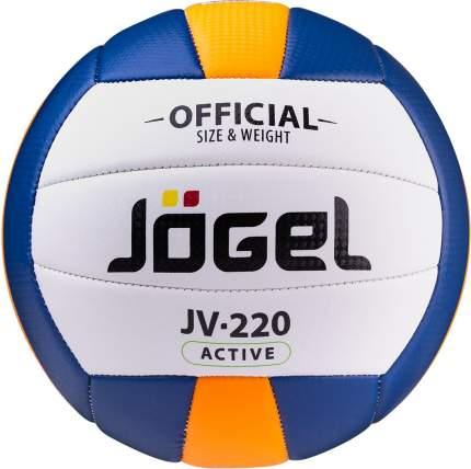 Волейбольный мяч Jogel JV-220 №5 blue/white/yellow