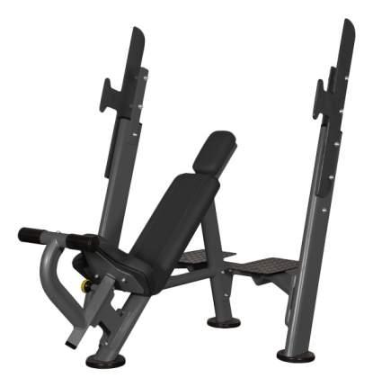 Скамья со стойкой наклонная Spirit Fitness AFB101