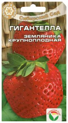 Семена Клубника крупноплодная Гигантелла, 10 шт, Сибирский сад