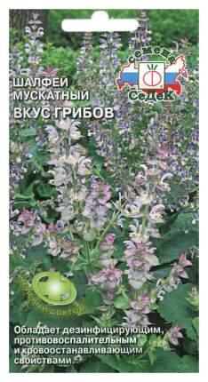 Семена Шалфей мускатный Вкус грибов, 0,1 г СеДеК