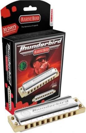 Губная гармоника диатоническая HOHNER Marine Band Thunderbird D low