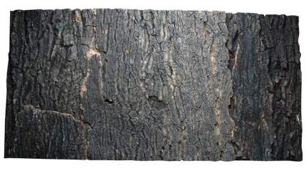 Фон для террариума Lucky Reptile Dark, натуральная кора дерева, 56x57 см