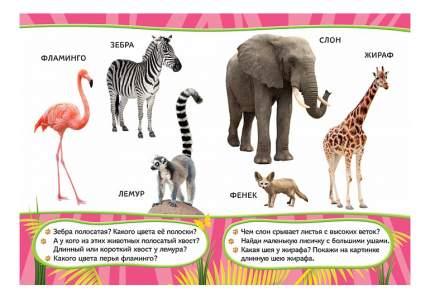 Книжка Росмэн Удивительные Животные