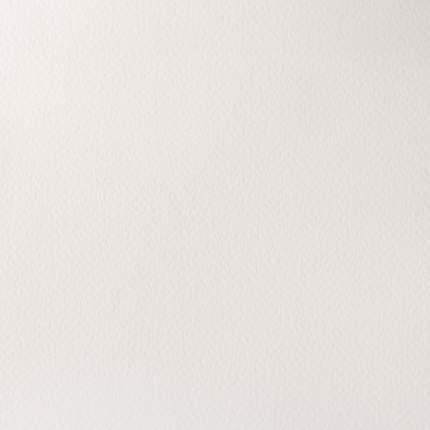 Акварель Winsor&Newton Artists Watercolour белый титан 5 мл