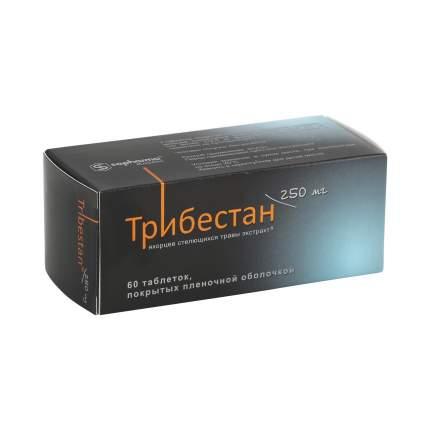 Трибестан таблетки 250 мг 60 шт.