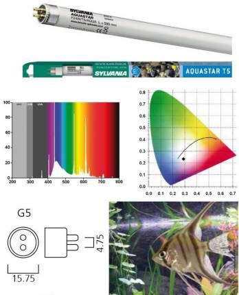 Люминесцентная лампа для аквариума Sylvania Aquastar, 24 Вт, цоколь G5, 43,8 см