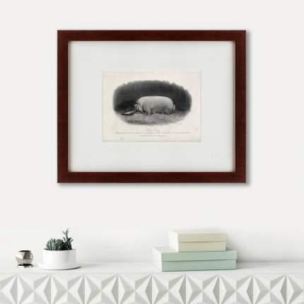 Литография A prize boar, 1867, 42х52см, Картины в Квартиру
