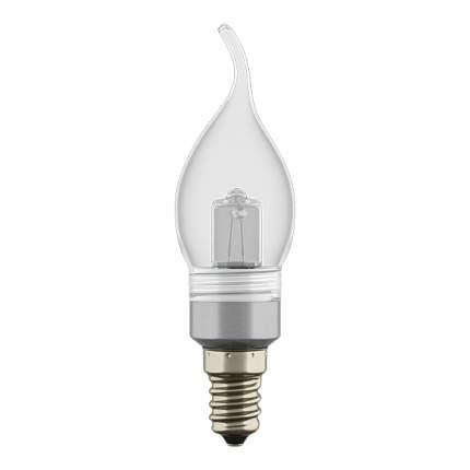 Галогенная Лампочка Lightstar 922951