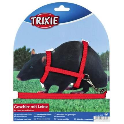 Поводок и шлейка TRIXIE для грызунов, в ассортименте