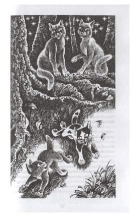 Хантер. коты-Воител и Цикл Видение теней. Гроза и тень.