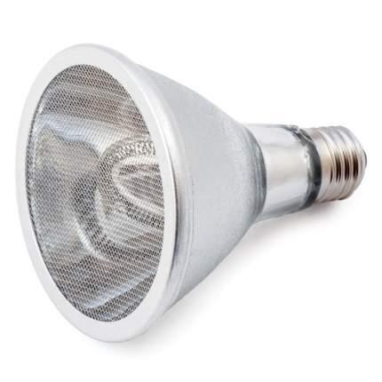 Рефлектор инфракрасный для террариума Repti-Zoo, 75 Вт