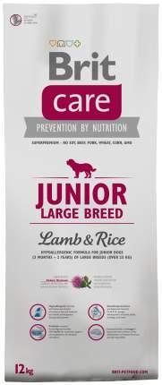 Сухой корм для щенков Brit Care Junior Large Breed, для крупных пород, ягненок, рис, 12кг