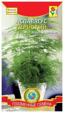 Семена Аспарагус Перистый, 3 шт, Плазмас