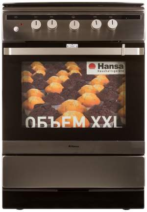 Газовая плита Hansa FCGX62020 Silver