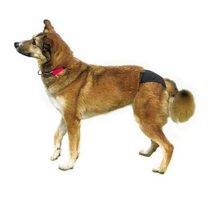 Трусы для собак TRIXIE размер XL, черные