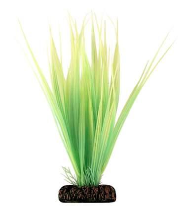 Laguna Растение светящееся Бликса зеленая, 10 см