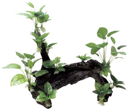 Декоративная композиция ArtUniq Mangrove Driftwood With Anubias XL2