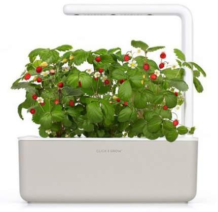 Фермы для растений Click & Grow Smart Garden 3 земляника (бежевый)