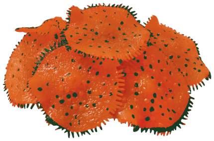 Искусственный коралл Jelly Fish Ковровая Актиния светящийся 1266