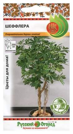 Семена Шеффлера, 5 шт, Зеленый дом Русский огород