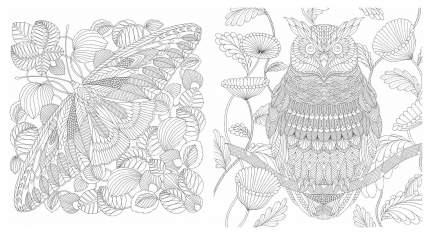 Раскраска «Чудеса природы. Золотая коллекция любимых иллюстраций»
