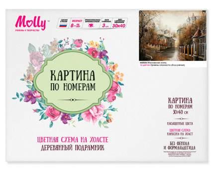 """Картина по номерам Molly """"Московская осень"""", 30x40"""