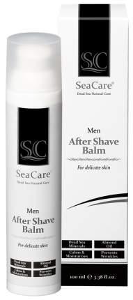 Мужской косметический набор №6 SeaCare Шампунь, Гель для душа, Бальзам после бритья