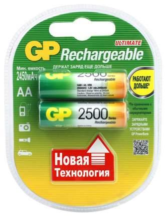 Аккумулятор GP Batteries 250AAHC 2 шт