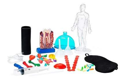 Французские опыты науки с буки Bondibon (8 экспериментов) секреты человеческого тела