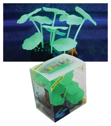 Декорация для аквариума JELLYFISH растение зеленый