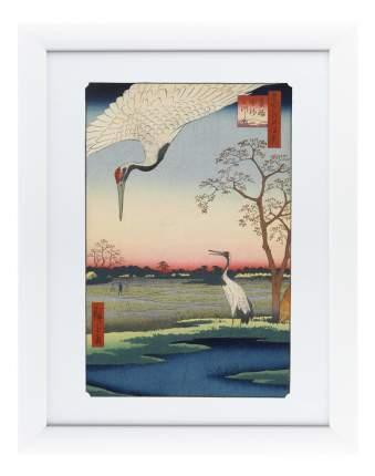 Картина Картины в Квартиру Цветная гравюра №4 47 х 60 см