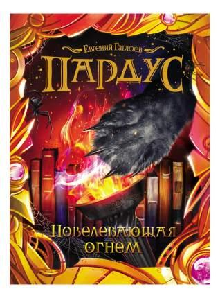 Пардус. 2. повелевающая Огнем. Евгений Гаглоев