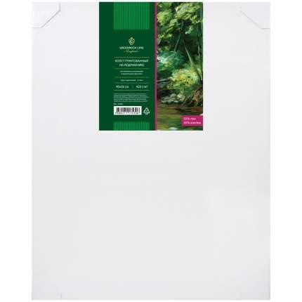 Холст грунтованный на подрамнике, 40x50 см, 420 г/м2, среднее зерно