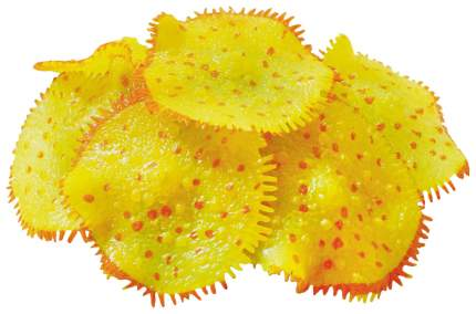 Искусственный коралл JELLY-FISH Актиния светящийся, желтый, 10х10х8 см