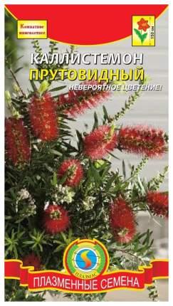 Семена Каллистемон Прутовидный, 3 шт, Плазмас