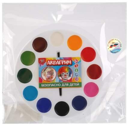 Аквагрим Multiart палитра 12 цветов красок на маслянной основе