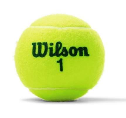 Мяч теннисный Wilson Championship, желтый
