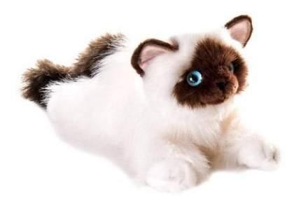 Мягкая игрушка Aurora 61-822 Кошка Сиамская, 30 см