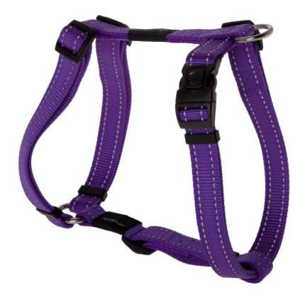 Шлейка для собак Rogz Utility L-20мм (Фиолетовый SJ06E)