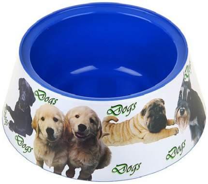 Одинарная миска для собак HITT, пластик, синий, 1.2 л