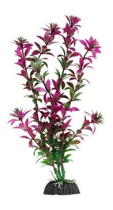 Laguna Растение аквариумное Ротала сиреневая, 40 см