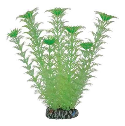 Laguna Растение светящееся 20097Y для аквариума, 20 см