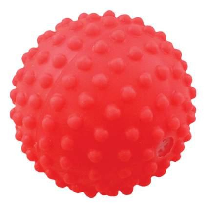 Мяч для собак Зооник, Винил, СИ68