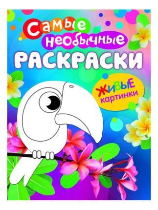Необычная раскраска Живые картинки Птичка Росмэн 26327
