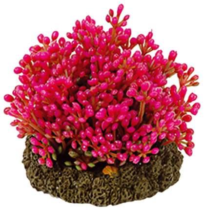 Искусственное растение для аквариума DEZZIE , розовый, пластик, 7см