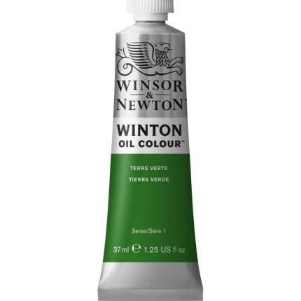 Масляная краска Winsor&Newton Winton глауконит 37 мл