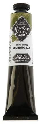 Акриловая краска Невская Палитра Мастер-класс оливковый 46 мл
