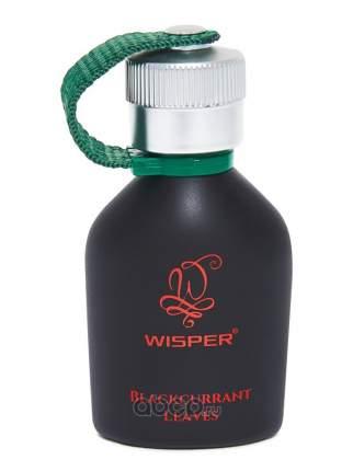 Парфюмерная Вода Blackcurrant Leaves (Блэккаррант Ливс), Wisper арт. WBL