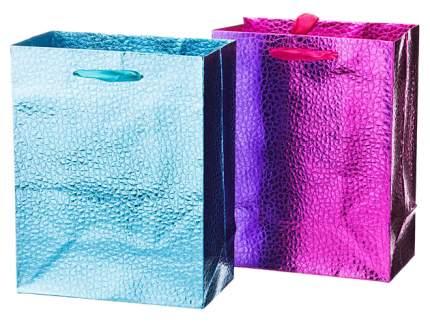 Пакет подарочный Lefard 512-535 Голубой, розовый