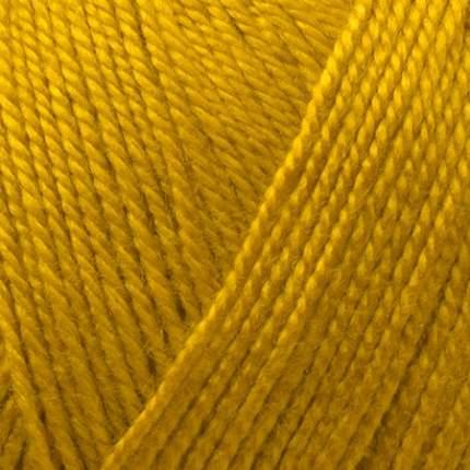 Пряжа для вязания Пехорка Акрил 5 шт. по 100 г 300 м цвет 447 горчица
